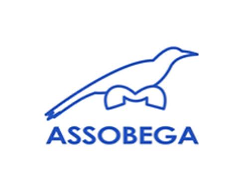 Associação Beneficente Gralha Azul – ASSOBEGA