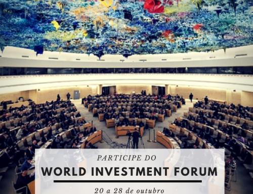 Diplomacia Civil busca jovens delegados para participar de fóruns da ONU