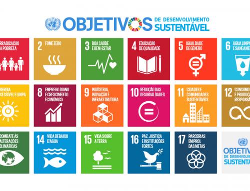 Descubra qual ODS é você